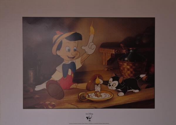 Pinocchio20fd20Blanc